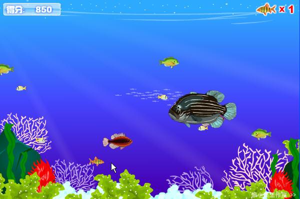 海底总动员是一款休闲益智小游戏。游戏操作十分简单只需用鼠标即可。游戏讲述的是在蓝蓝的海洋里,住着大大小小的各种鱼类,为了能很好的在海里生存,小一点的鱼类就要特别的小心,因为比它大的动物随时都会把它们吃掉,所以要避开它们!玩家使用鼠标控制小鱼的移动,当它遇见比自己小的鱼时,就可以吃掉它并得到相应的分数,在吃下足够多的鱼后,小鱼就能长大,一定要避开比自己大的鱼。
