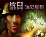 抗日血战缅甸中文版