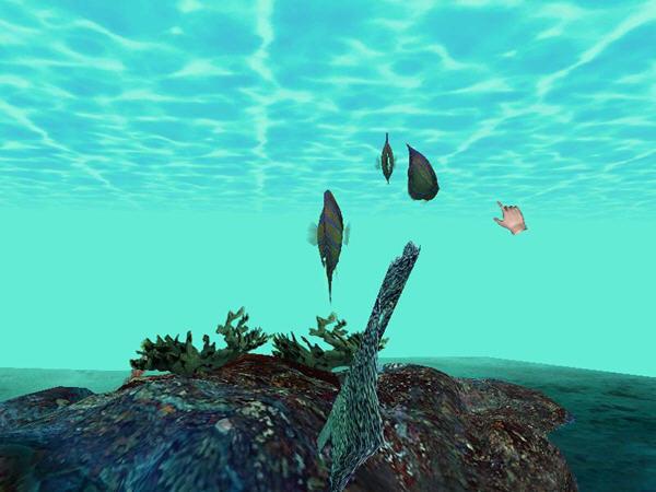梦幻海洋岛