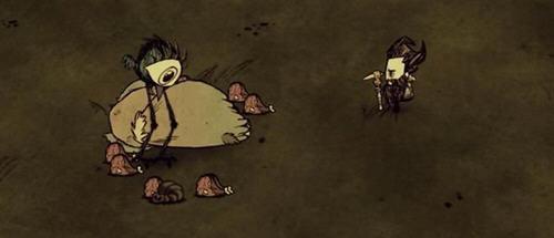 饥荒mod宠物极品高鸟