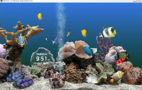 壁纸 海底 海底世界 海洋馆 水族馆 桌面 487_311