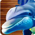 海洋捕手 1.0