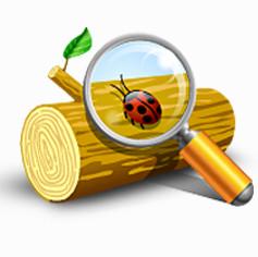 Event Log Explorer(系统日志监测软件)