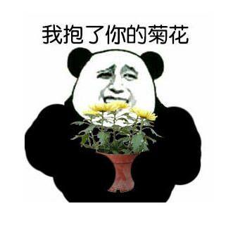 金馆长熊猫骂人表情包