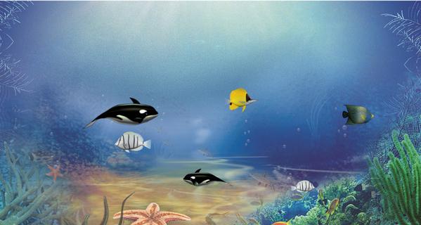 酷鱼海底世界2下载v2.1 官方版_酷鱼动态壁纸_飞翔下载