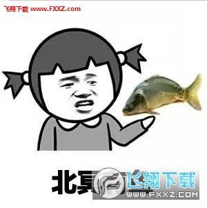 北冥有鱼恶搞高清表情包图片