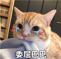 委屈巴巴图片猫表情无水卡通委屈|下载巴巴委屈图片印版大全圆脸表情图片
