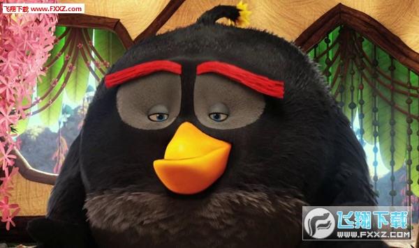 愤怒的小鸟大电影炸弹黑微信表情包