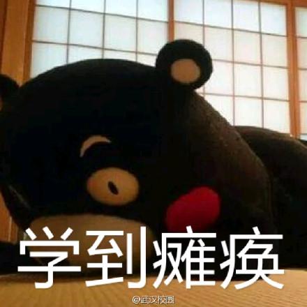 熊本熊考试表情包完整版图片