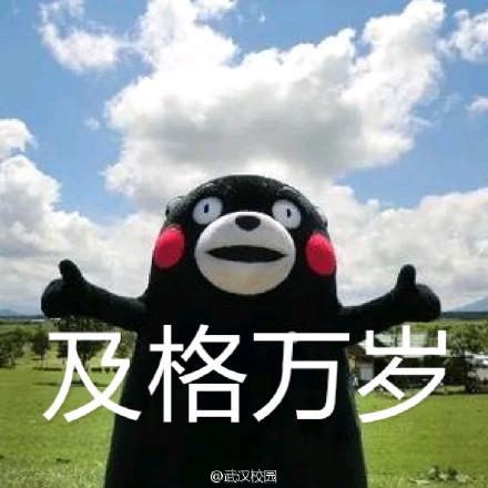 熊本熊考试表情包完整版