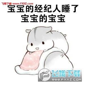 我反正是支持宝宝的仓鼠表情包图片