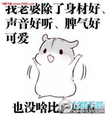 仓鼠夫君宠媳妇的正确打开方式表情包 宠媳妇的正确打开方式小仓鼠版