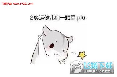 hamham仓鼠中文表情包下载地址|hamham仓鼠微信表情