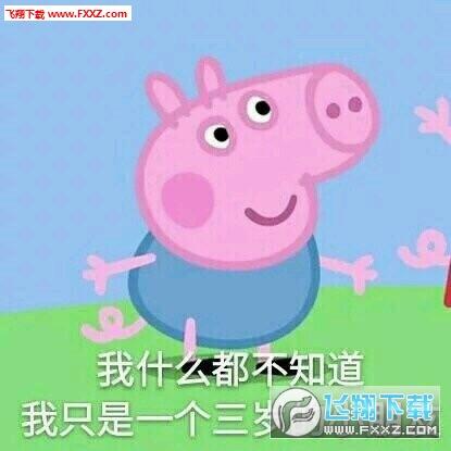 太好玩了,这里小编就给大家分享一下小猪佩奇斗图表情包 qq和微信添加