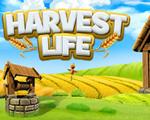 丰收人生(Harvest Life)破解版