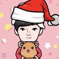 圣诞绿帽子贴纸p图app
