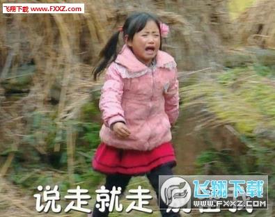 社你丽姐表情系列虾动图片搞笑的图片
