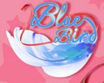 蓝鸟(Blue Bird)中文版