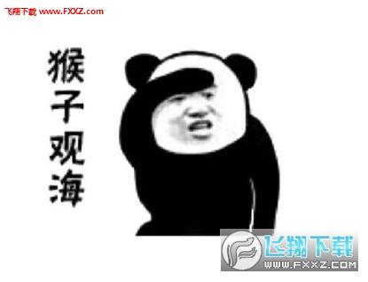 熊猫头表情动态笑着活下去的表情功夫包图片