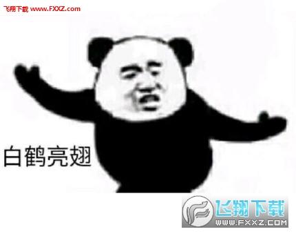 熊猫练功夫表情包下载|熊猫头功夫表情包无水印版下载