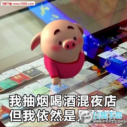 猪小屁表情包无水印版   猪小屁表情包是一组非常可爱的猪小屁形象