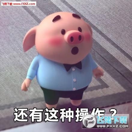 首页 网络工具 聊天工具 → 猪小屁表情包无水印版   猪小屁表情包是