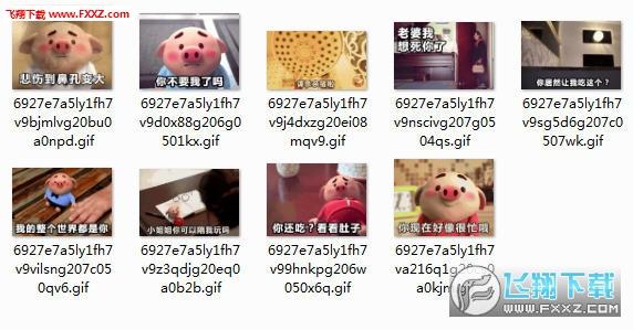 猪小屁gif动态表情的二字表情包v动态兰兰图片