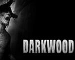 黑暗森林(Darkwood)中文版