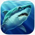 鲨鱼模拟器3D破解版V1.0.3