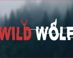 野狼模拟器破解版