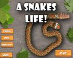 小小贪吃蛇绿色破解版