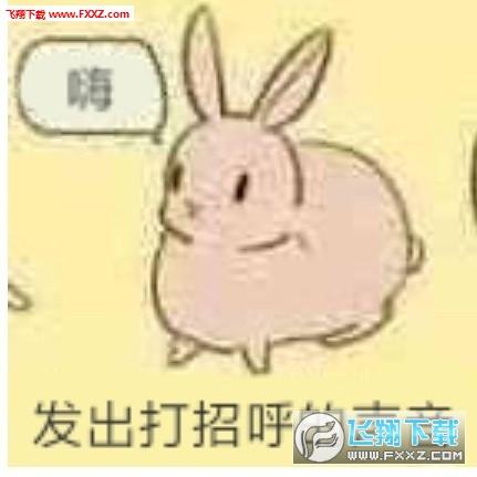 发出声音的兔子表情包下载 发出声音表情包兔子版下载 飞翔下载