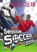 感官足球2006