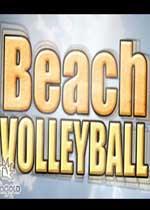 沙滩排球中文版