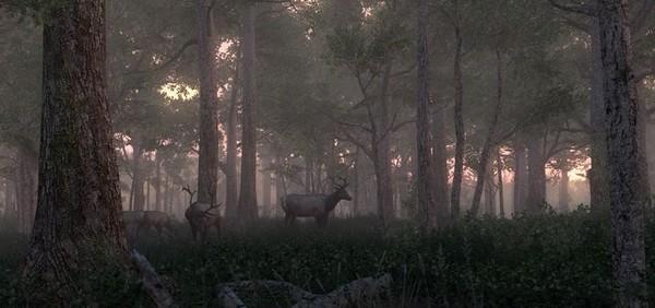 猎人2012截图11