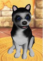 疯狂宠物2(FetchItAgain)硬盘版