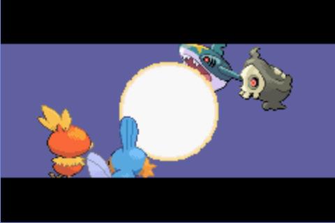 口袋妖怪:蓝宝石截图2