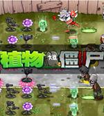 植物大战僵尸魔幻版 中文版