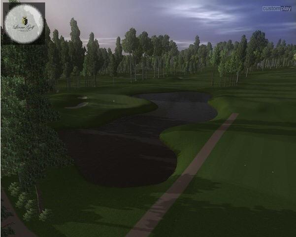 汉克哈尼的世界高尔夫截图1