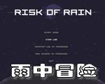 雨中冒�U(Risk of Rain)硬�P版