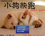 小狗快跑 中文版