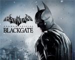 蝙蝠侠:阿甘起源之黑门监狱两项修改器