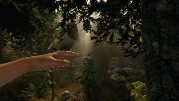 迷失森林截图4