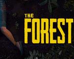 迷失森林中文版