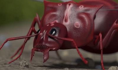 地下蚁国手游(蚂蚁战争)截图0