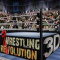 摔角革命3D 破解版