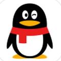 qq群排名软件破解版appV1.0最新免费版