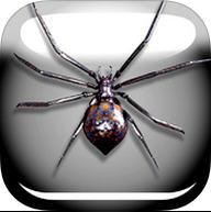 蜘蛛恶作剧苹果版 v1.0官方版