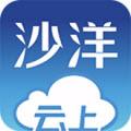 云上沙洋app V1.0.1安卓版