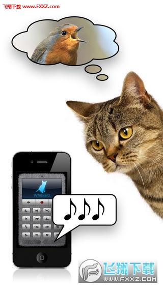 人猫交流器安卓版1.0.0截图2